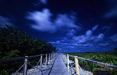 Photograph - Shooting Star In Tropical Paradise by Charline Xia