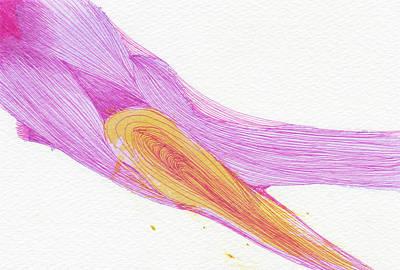 Shoots - #ss16dw049 Art Print by Satomi Sugimoto