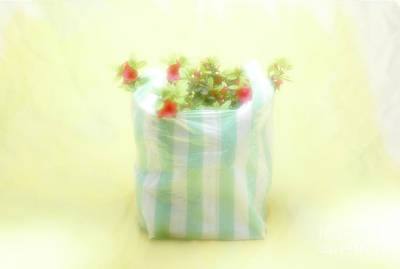 Photograph - Shopping Bag by Hans Janssen