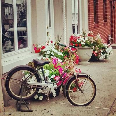 Bicycle Photograph - Shopping In Town by Colleen Kammerer