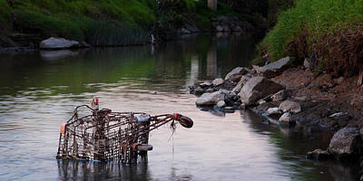 Photograph - Shopping Trolley by Tim Nichols