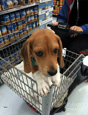 Shopping With Puppy  Art Print