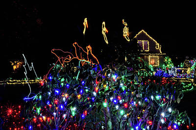 Photograph - Shore Acres Xmas Lights One by Thom Zehrfeld