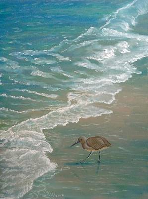 Pastel - Shore Bird by Joan Mansson