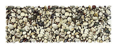 Shore Stones 3 Art Print by JQ Licensing