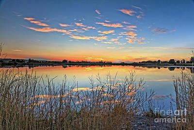 Photograph - Shore View by Robert Bales