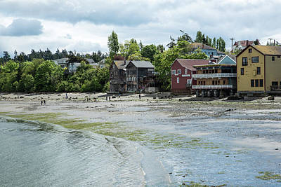 Photograph - Shore Walking In Coupeville by Tom Cochran