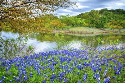 Country Photograph - Shoreline Bluebonnets At Lake Travis by Lynn Bauer