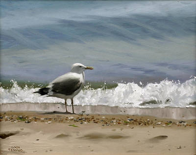 Sea Gull Wall Art - Painting - Shoreline Breeze by Linda Tenukas