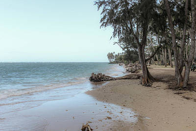 Photograph - Shoreline by Carolyn Ricks