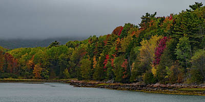Photograph - Shoreline Color by Gary Lengyel