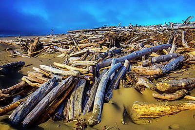 Weatherworn Photograph - Shoreline Driftwood by Garry Gay