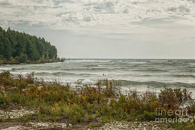 Photograph - Shoreline by Margie Hurwich