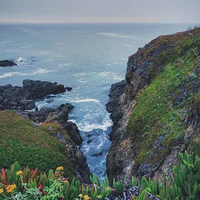 Photograph - Shoreline by Nisah Cheatham