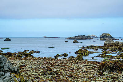 Coastline Photograph - Shoreline by Ric Schafer