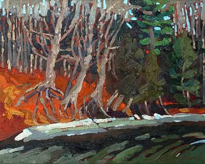 Shoreline Roots Art Print