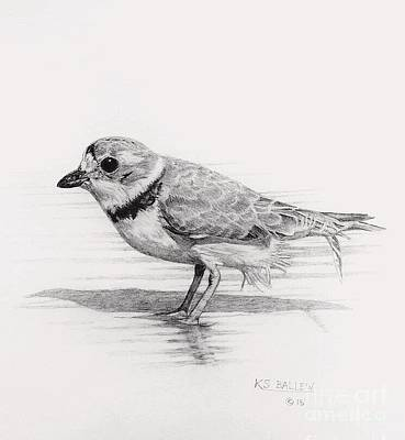 Sandpiper Drawing - Shoreline Stroll by Kevin Ballew
