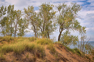 Photograph - Shores Of Lake Michigan by John M Bailey