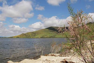 Photograph - Shores Of Lake Skinner by Suzanne Oesterling