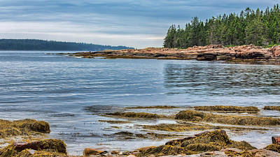Photograph - Shores Of Mt Desert Island by John M Bailey