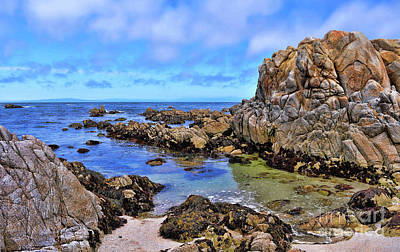 Photograph - Shores Of Pacific Grove  by Gina Savage