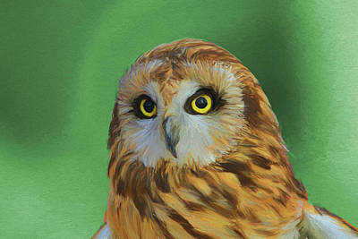 Painting - Short Eared Owl On Green by Dan Sproul