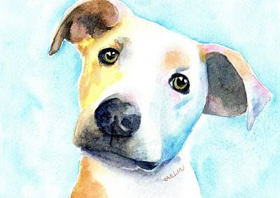 Watercolor Pet Portraits Wall Art - Painting - Short Hair White And Brown Dog by Carlin Blahnik CarlinArtWatercolor