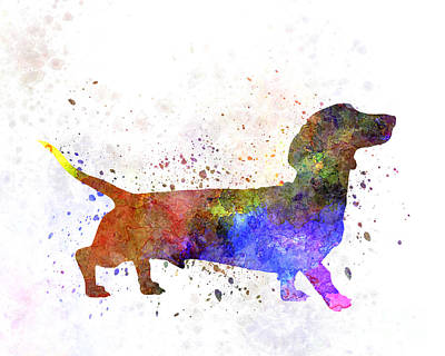 Short Haired Dachshund 01 In Watercolor Art Print by Pablo Romero