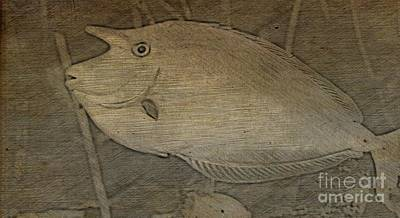 Photograph - Short Nosed Unicorn Tang Drawing by Steven Parker