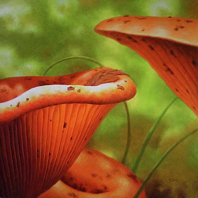 Shortcut To Mushrooms Art Print