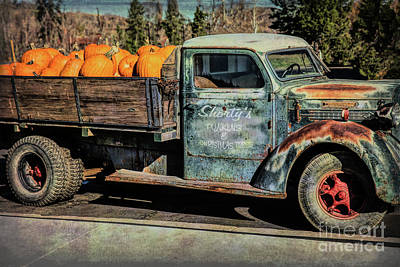 Photograph - Shorty's Punkins by Lynn Sprowl