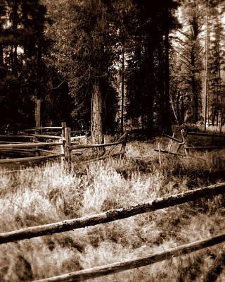 Photograph - Shoshone Fences by Karen Musick