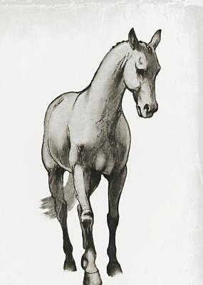 Shoulder-in Sketch Art Print by JAMART Photography