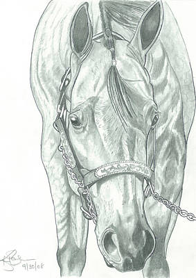 Drawing - Show Ready by American Horse