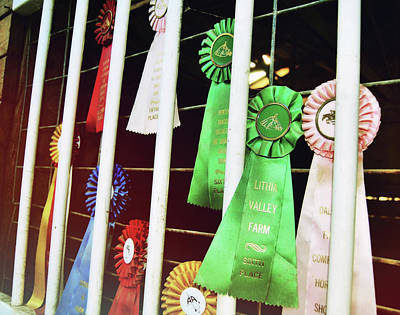 Photograph - Show Season Successes by JAMART Photography