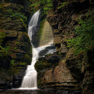 Photograph - Shower Of Eden by Neil Shapiro
