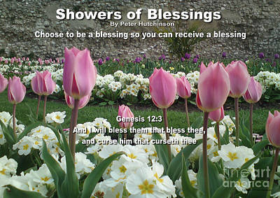 Showers Of Blessings Art Print