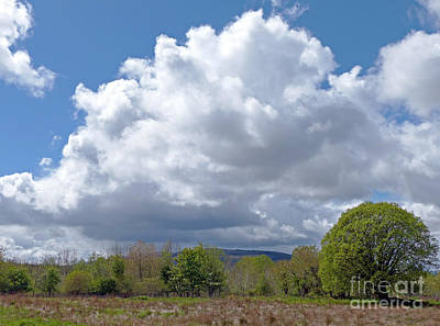 Photograph - Showery Spring Day by Phil Banks