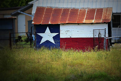 Photograph - Showing Texas Pride by Nadalyn Larsen