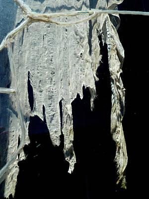 Photograph - Shredded Curtains by Amelia Racca