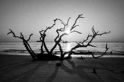 Driftwood Photograph - Shrimp Boat Off Driftwood Beach In Black And White by Greg Mimbs