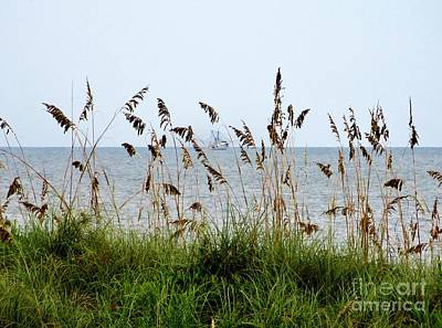 Photograph - Shrimping Boat Seen Through Sea Oats by Tim Townsend