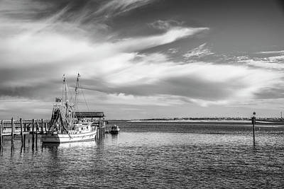 Photograph - Shrimping In Shemp by Jon Glaser