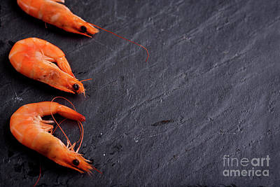Fresh Shrimp Wall Art - Photograph - Shrimps by Jelena Jovanovic