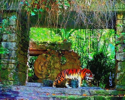 Photograph - Shrine Visitor by Mickey Wright
