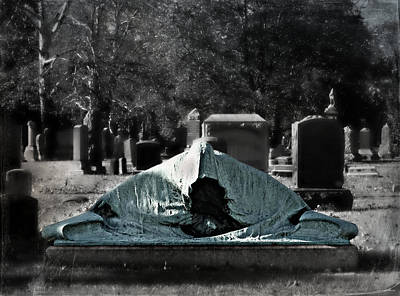 Photograph - Shrouded by Brenda Conrad