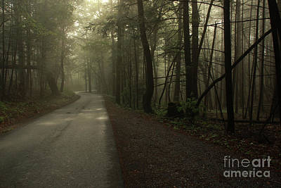 Shrouded Path Art Print by J L  Gould