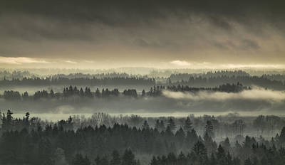 Photograph - Shrouded Valley by Don Schwartz