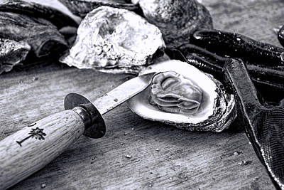 Photograph - Shuckin'  II by Ed Waldrop