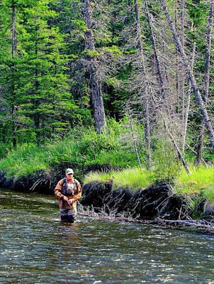 Photograph - Shunda Creek by Phil Rispin
